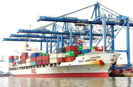 Số lượng tàu tăng lên nhưng thị phần vận tải hàng hóa quốc tế lại giảm đi do không cạnh tranh được với các tàu nước ngoài.