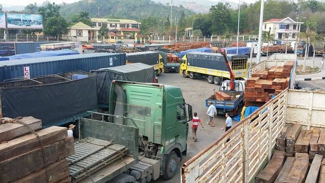 Hàng trăm xe gỗ ùn ứ ở Cửa khẩu Quốc tế Lao Bảo ảnh 5