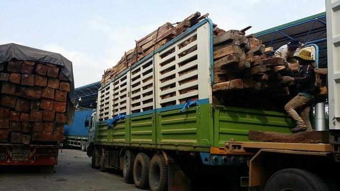Hàng trăm xe gỗ ùn ứ ở Cửa khẩu Quốc tế Lao Bảo ảnh 6