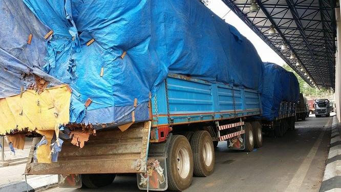Hàng trăm xe gỗ ùn ứ ở Cửa khẩu Quốc tế Lao Bảo ảnh 8