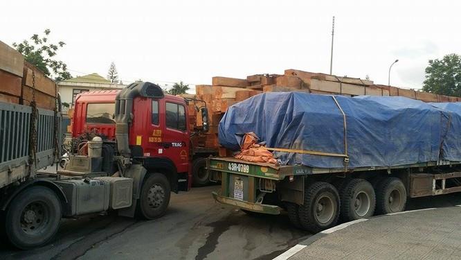 Hàng trăm xe gỗ ùn ứ ở Cửa khẩu Quốc tế Lao Bảo ảnh 9
