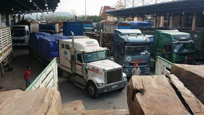 Hàng trăm xe gỗ ùn ứ ở Cửa khẩu Quốc tế Lao Bảo ảnh 13