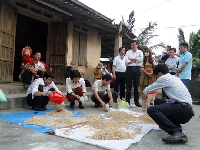 Đoàn thanh tra Sở Nông nghiệp và PTNT tiến hành lấy mẫu cám đi phân tích chất lượng.