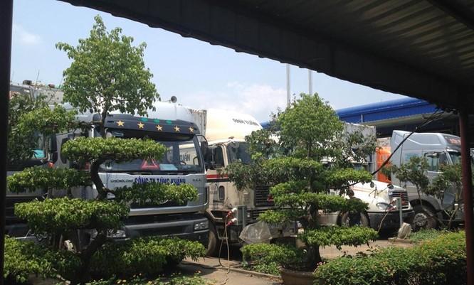 Hơn 500 xe đông lạnh ùn tắc tại cửa khẩu Lào Cai ảnh 4
