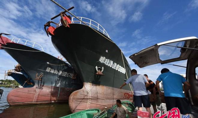 Tàu cá Trung Quốc rầm rộ ra Biển Đông ảnh 4