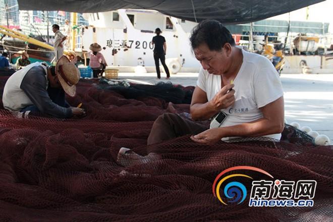 Tàu cá Trung Quốc rầm rộ ra Biển Đông ảnh 3