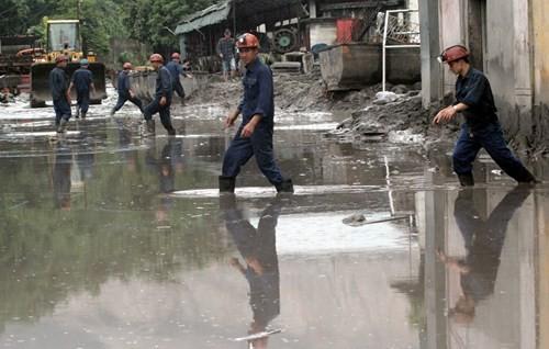 Nhiều vựa than tan hoang sau mưa lũ ở Quảng Ninh ảnh 5