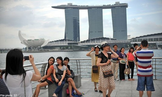Singapore phân trần việc cấm du khách Việt nhập cảnh ảnh 1