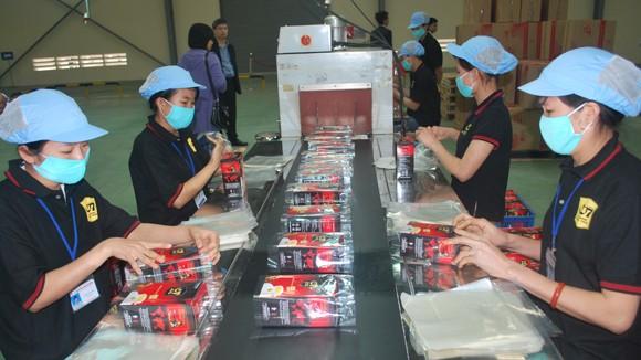 """""""Tranh chấp"""" tại Trung Nguyên: Bà Lê Hoàng Diệp Thảo đang nắm quyền tại những công ty nào? ảnh 3"""