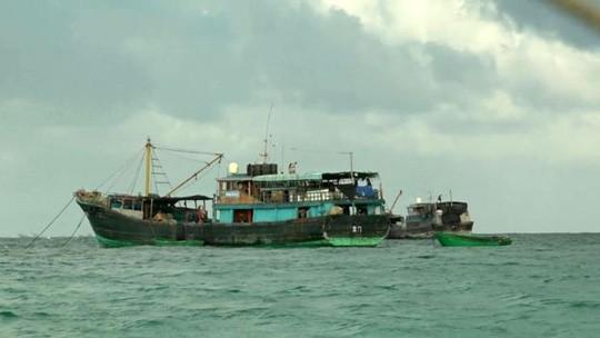 Phóng viên BBC sốc nặng vì ngư dân Trung Quốc ảnh 1