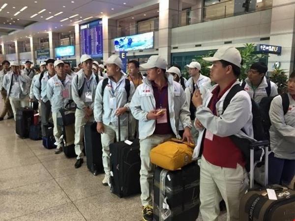 Vì sao hàng nghìn người Việt mất cơ hội đi làm ở Hàn Quốc? ảnh 1