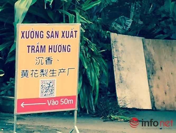 Đà Nẵng: Xuất hiện showroom cấm cửa khách Việt, chỉ đón khách Trung Quốc! ảnh 9
