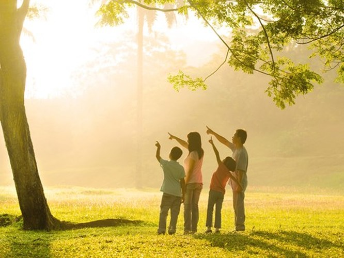 Người Việt hạnh phúc thứ 5 thế giới, theo viện Gallup ảnh 2