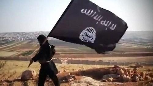 Chính phủ Syria tuyên bố sẵn sàng tham gia đối thoại hòa bình ảnh 1