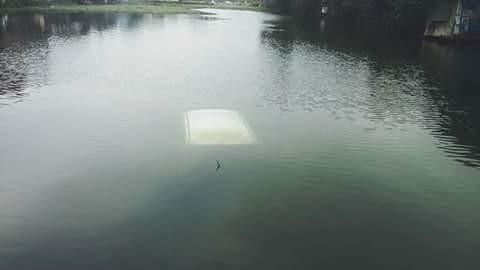 """Clip nữ lái xe lùi xế hộp """"tắm hồ"""" giữa trời lạnh 6 độ C ở Hà Nội ảnh 2"""