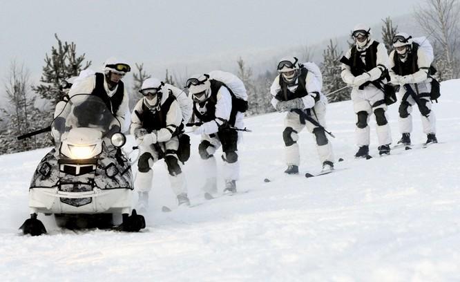 Clip tuần lộc và chó kéo xe tham gia huấn luyện tác chiến của Nga ảnh 1