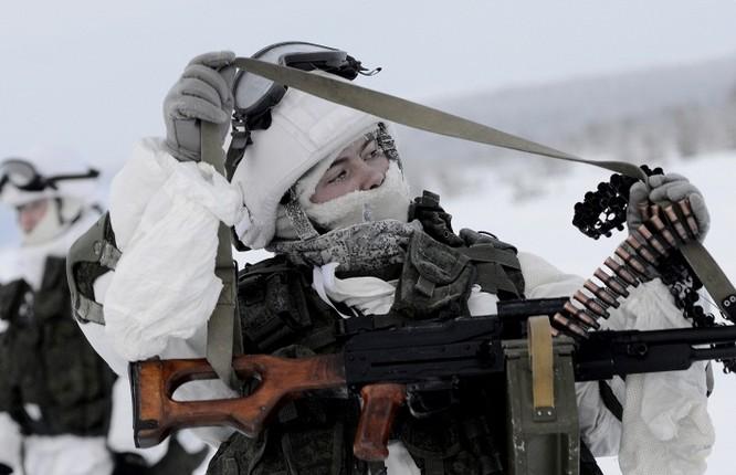 Clip tuần lộc và chó kéo xe tham gia huấn luyện tác chiến của Nga ảnh 2
