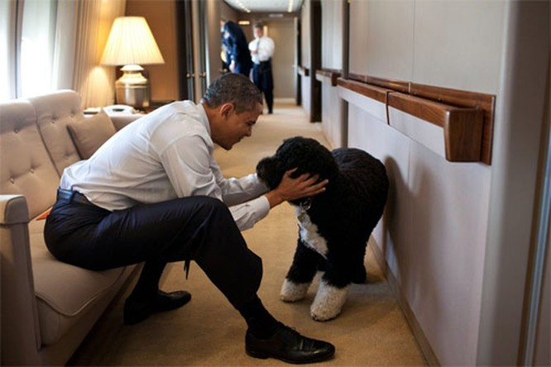 Choáng với chi phí vận hành chuyên cơ chở Obama ảnh 2