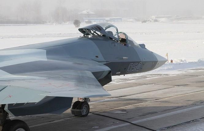 Giá tiêm kích tàng hình FGFA sẽ đắt gấp đôi Su-30MKI ảnh 3