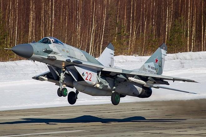 Nga bán 50 chiếc Mig-29 cho ai? ảnh 4