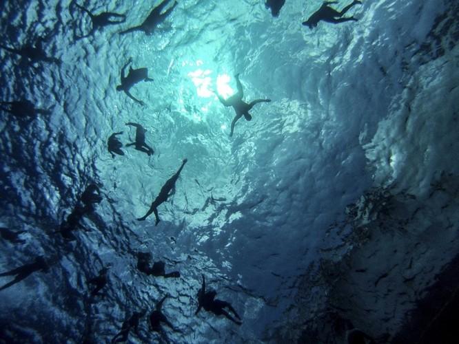 Thú vui bơi lội của thủy thủ Mỹ làm nhiệm vụ giữa đại dương ảnh 1