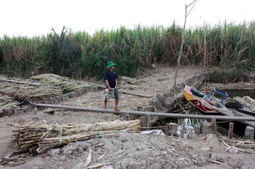 """Đập thủy điện Trung Quốc xây trên sông Mekong: Hạ lưu """"lãnh đủ"""" ảnh 1"""