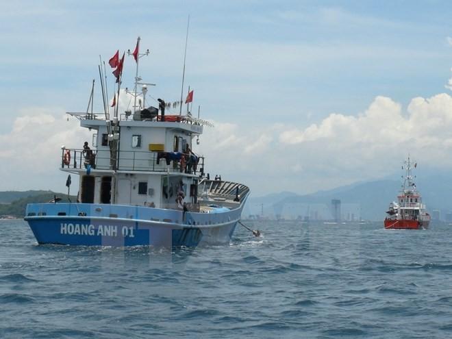 Hội nghề Cá: Chưa biết thông tin gì về vụ ngư dân trả tàu vỏ thép ảnh 1