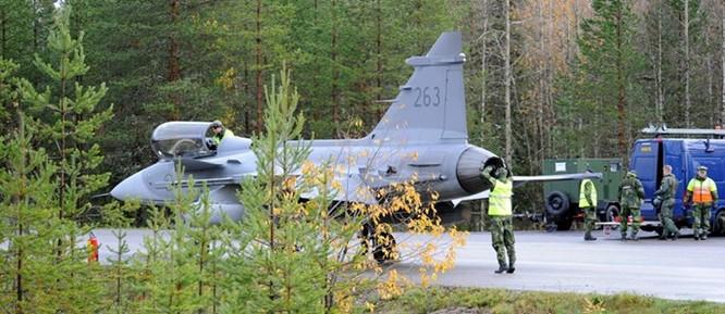 Việt Nam có thể mua 12 tiêm kích Gripen của Thụy Điển ảnh 3
