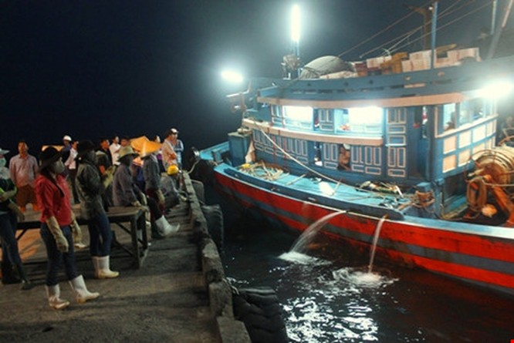 Vừa cập cảng, ngư dân Quảng Bình đã thu cả trăm triệu đồng ảnh 3