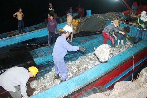 Vừa cập cảng, ngư dân Quảng Bình đã thu cả trăm triệu đồng ảnh 4