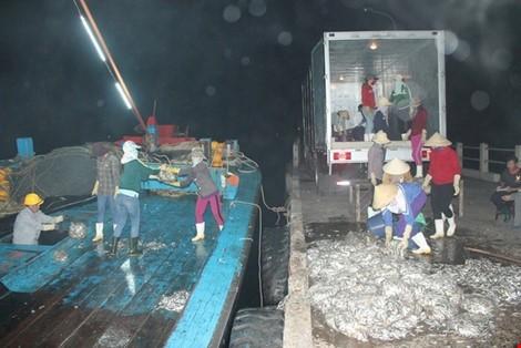 Vừa cập cảng, ngư dân Quảng Bình đã thu cả trăm triệu đồng ảnh 2