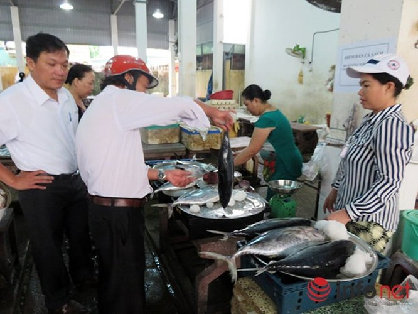 Sáng nay 3/5, cá biển sạch bắt đầu được bán ở các chợ Đà Nẵng ảnh 4