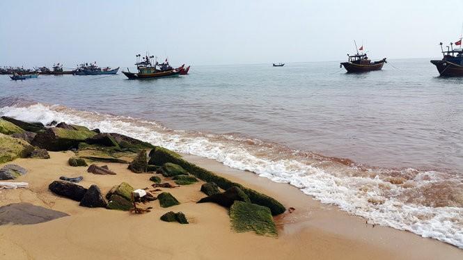 Xuất hiện vệt nước đỏ 1,5km dọc bờ biển Quảng Bình ảnh 2