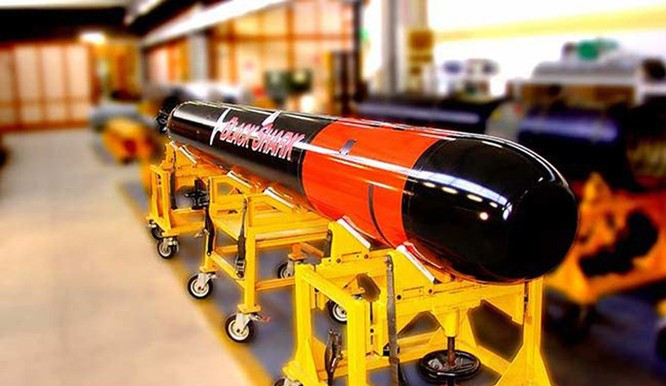 Tàu ngầm Ấn Độ tự đóng như 'hổ không nanh' - ảnh 2