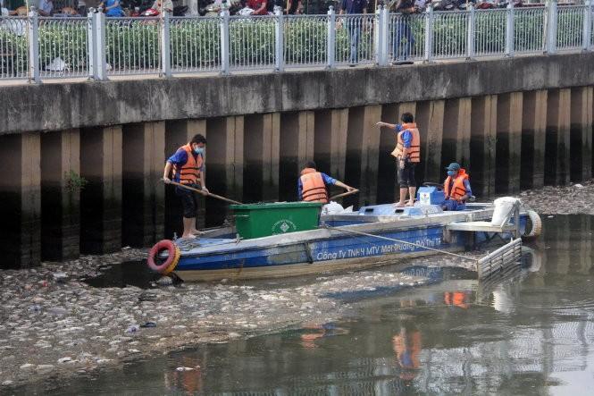 Đã vớt gần 70 tấn cá chết trên kênh Nhiêu Lộc - Thị Nghè ảnh 1