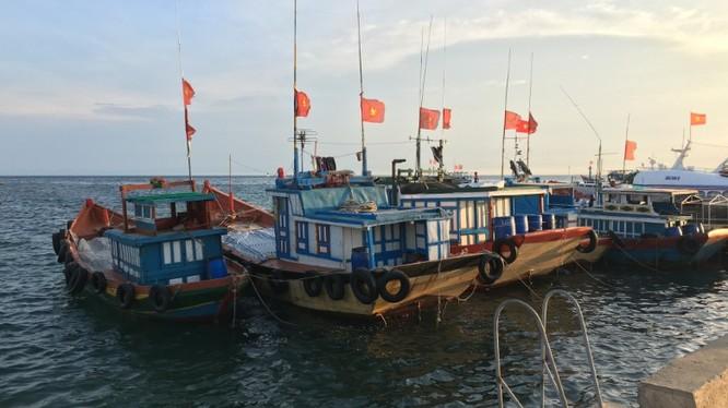 Báo Mỹ: Ngư dân Việt quyết bám biển bảo vệ chủ quyền quốc gia ảnh 2