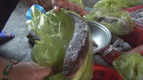 Phóng sự thảm họa cá chết Việt Nam rúng động Đài Loan ảnh 3