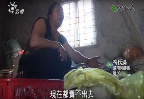 Phóng sự thảm họa cá chết Việt Nam rúng động Đài Loan ảnh 1