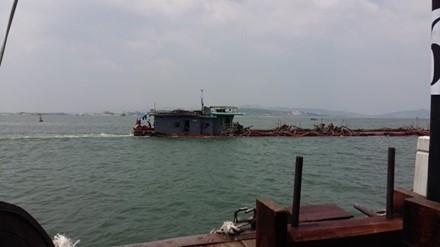 Bí thư Quảng Ninh yêu cầu chấm dứt vận chuyển than trên đường bộ ảnh 1