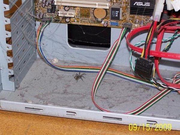 Những bộ máy tính bẩn đến mức thợ sửa nhìn vào phải phát khóc ảnh 7