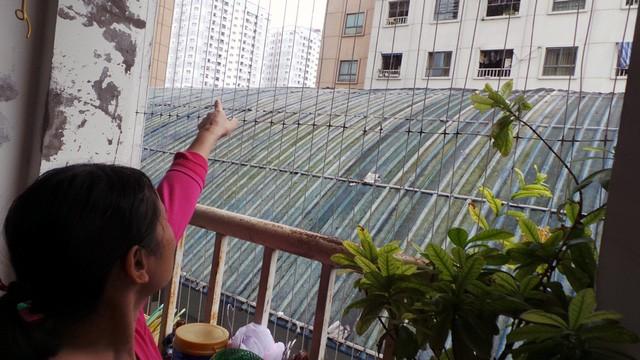 Hà Nội: Cháy lớn tại bể bơi lọt giữa 3 tòa chung cư Xa La ảnh 9