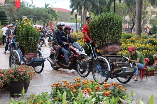 Chợ hoa Tết miền Trung nhộn nhịp ảnh 9