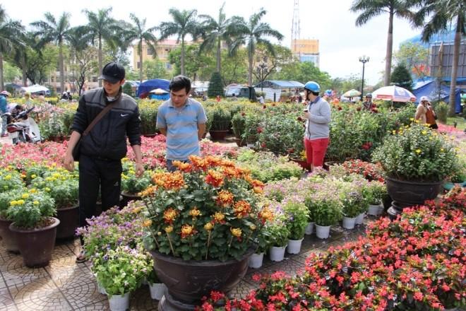 Chợ hoa Tết miền Trung nhộn nhịp ảnh 7
