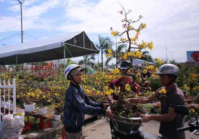 Chợ hoa Tết miền Trung nhộn nhịp ảnh 5