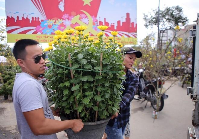 Chợ hoa Tết miền Trung nhộn nhịp ảnh 4