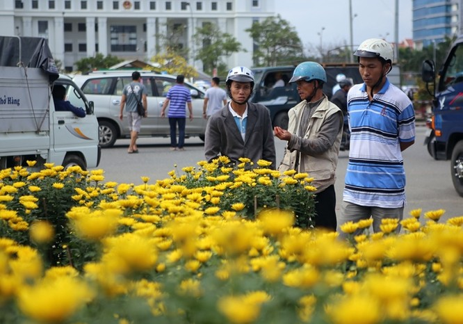 Chợ hoa Tết miền Trung nhộn nhịp ảnh 2