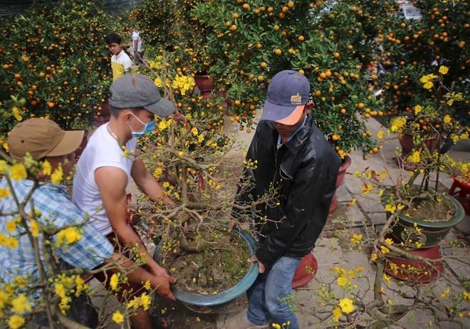 Chợ hoa Tết miền Trung nhộn nhịp ảnh 3