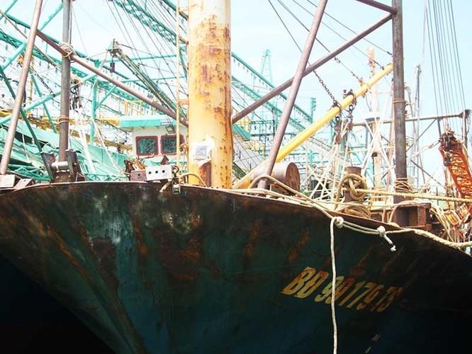 Vụ tàu thép: Nam Triệu sẽ thay 11 máy mới cho dân - ảnh 2