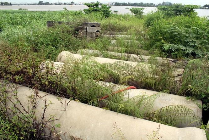 Dự án lấn sông Đồng Nai như thế nào sau 2 năm tạm dừng ảnh 7