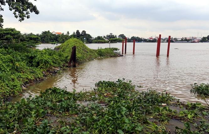 Dự án lấn sông Đồng Nai như thế nào sau 2 năm tạm dừng ảnh 3